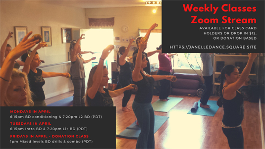 Belly Dance Classes with Janelle Santa Cruz